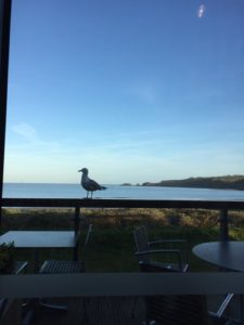 The view from Coast, Beachhouse's sister restaurant in Pembrokeshire